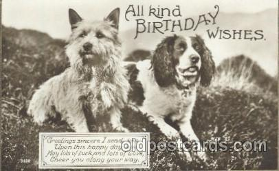 Birthday Wishes Dog Dogs Postcard Post Card