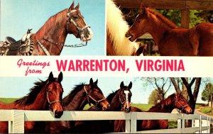 Virginia Greetings From Warrenton