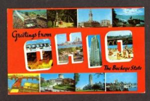 OH Greetings from OHIO Large Letter Postcard Buckeye PC