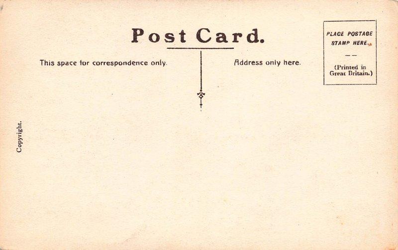 New Zealand Hemp Swamp, Early Postcard, Unused