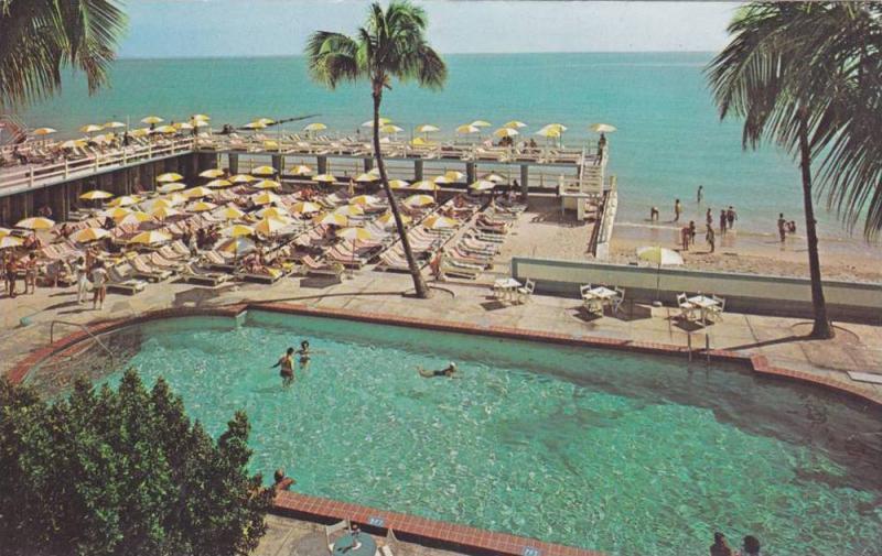 Swimming Pool The Crown Hotel Miami Beach Florida