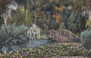 REDLANDS, California, 1900-10s; Scene in Prospect Park