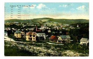 NY - Catskills, Liberty. Bird'sEye View North