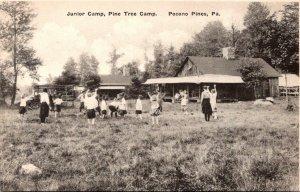 Pennsylvania Pocono Pines Pine Tree Camp Junior Camp Albertype