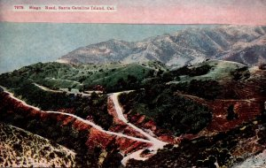 California Santa Catalina Island Stage Road