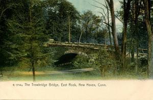 CT - New Haven - East Rock, The Trowbridge Bridge