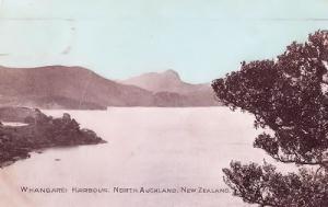 Whangarei Harbour New Zealand Antique Postcard & Rare Cancellation