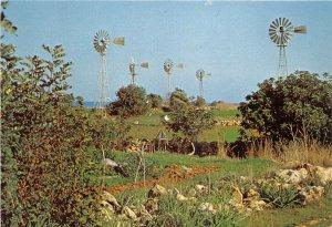 Lot 98 wind mills protaras cyprus