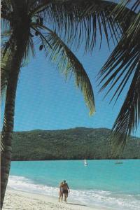 Barbados Beautiful Beach Scene