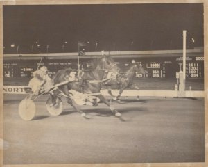 NORTHFIELD PARK Harness Horse Race , GLEADON CREEK winner, 1970-80s