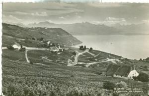 Switzerland, Lac Leman, Vignoble de Lavaux unused Real Ph...