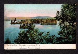 NY Vintage Raquette Lake Adirondack Mts Mountains New York Postcard UDB