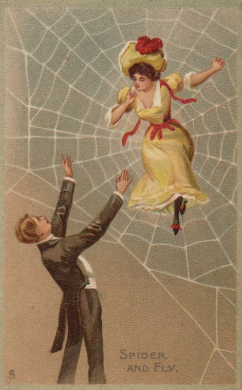 Woman caught up in a Spider's Web , Spider and Fly , 1912 ; TUCK 120