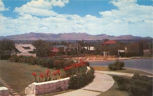 El Paso Texas~Looking Toward Mexico from Eastern Residential Heights~c1960s Pc