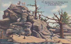 Illinois Chicago Zoological Park At Brookfield Mountain Goat & Monkey Island ...