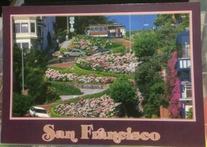 United States San Francisco Lombard Street - posted
