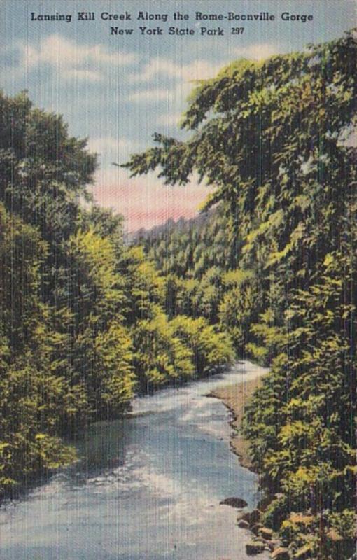 New York Lansing Kill  Creek Along The Rome-Boonville Gorge New York State Park