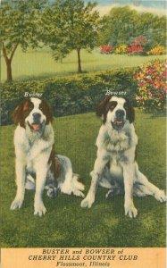 Flossmore Illinois Postcard Buster Bowser Cherry Hills Golf Course Kohl 21-5822
