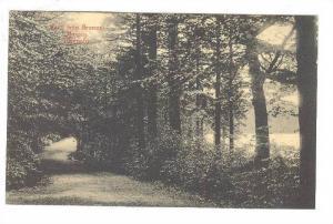Ronneby , Parti fran Brunns-skogen , Sweden , 00-10s