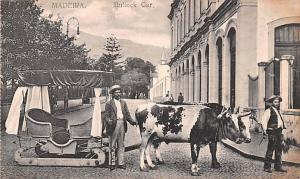 Spain Old Vintage Antique Post Card Bullock Car Madeira Unused