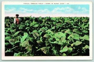 West Monroe Louisiana Postmark~Sunny Dixie Tobacco Field~Worker~1941 Linen