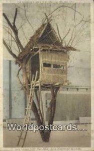 Lake Lanao Tree Dwelling Philippine Islands Philippines Unused