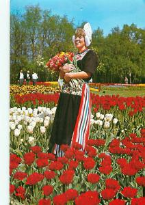 Holland Young Lady Holding Tulips in Tulip Garden Flowers  Postcard  # 8080