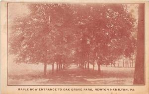 NEWTON HAMILTON PA MAPLE TREE ROW ENTRANCE TO OAK GROVE PARK POSTCARD c1920