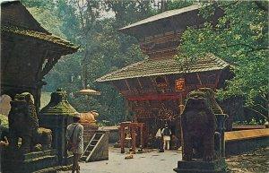 Nepal Temple of Bajra Barachi Chapagoun