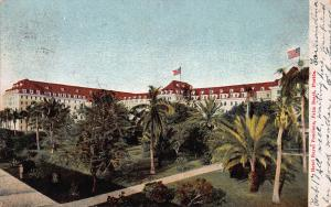 Hotel Royal Ponciana, Palm Beach, Florida, Early Postcard, Used in 1906