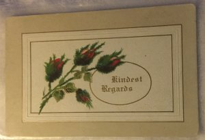 Vintage Postcard Rose Buds M. L. Zercher Book and sta. Co. Advertising Offer