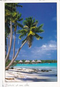 Plage de Polynesie , LA VAGUE de TEAHUPOO , Pu-2000