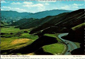 Vintage Idaho Souvenir Postcard, Whitebird Hill & Highway 95 pb24