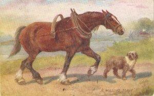 Norah Drummond.  Willingn Slave Tuck Oiette Man's Best Friend Ser.PC # 9561