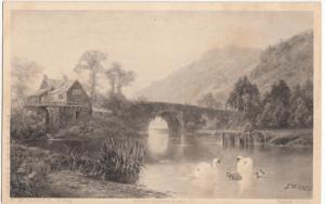 F. W. Hayes, Pinx, Photogravure, Swans, House and Bridge, unused Postcard