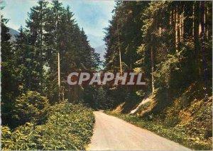 Postcard Modern Col Echarmeaux alt 720 m La Forestiere Road
