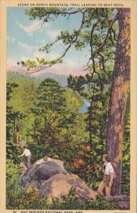 Arkansas Hot Springs Scene On North Mountain Curteich
