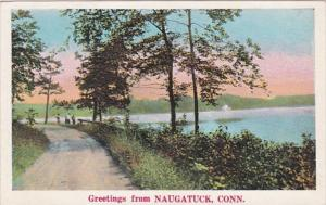 Connecticut Greetings From Naugatuck