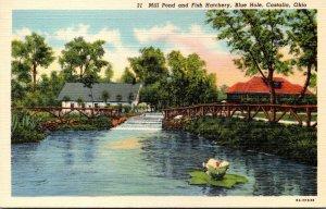 Ohio Castalia Blue Hole Mill Pond and Fish Hatchery Curteich