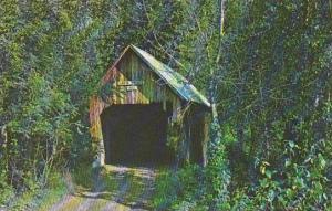 Covered Bridge Tunbridge Old Covered Wood Bridge Known As The Larkin Bridge V...