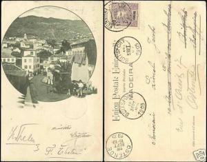 portugal, MADEIRA, Street, Bullock Sledge (1905) Stamp