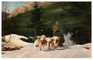New Hampshire  Team of Ed Clark's  eskimo sled dogs