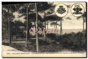Old Postcard Arcachon A corner of the forest to Abatilles pigeon shooting and...