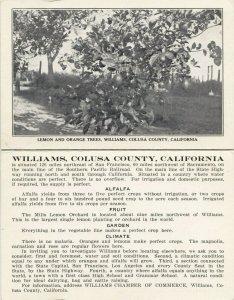 WILLIAMS , California, 1900-1910s; Bi-fold Postcard