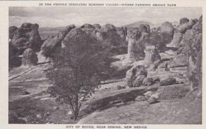 New Mexico Deming City Of Rocks Albertype
