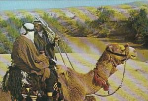 Scene Along The Jordan River Camel and Bedouins