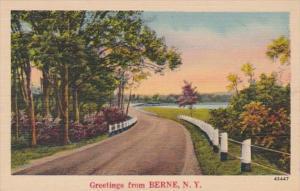 New York Greetings From Berne
