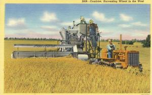 US    PC973  COMBINE, HARVESTING WHEAT IN THE WEST