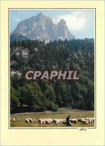 Postcard Modern Refelts of Bearn transhumance at the foot of the Ossau (28884...