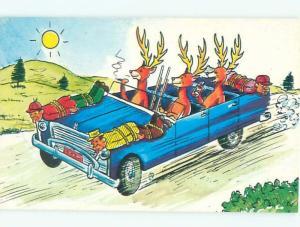 1960's Comic role reversal DEER DRIVING THE CAR & HUNTERS ON HOOD OF CAR AC0221
